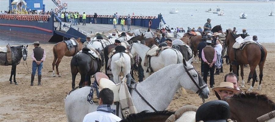 Actualidad Actualidad Mueren 13 caballos durante la romería de El Rocío y la Junta de Andalucía levanta tres actas por maltrato animal